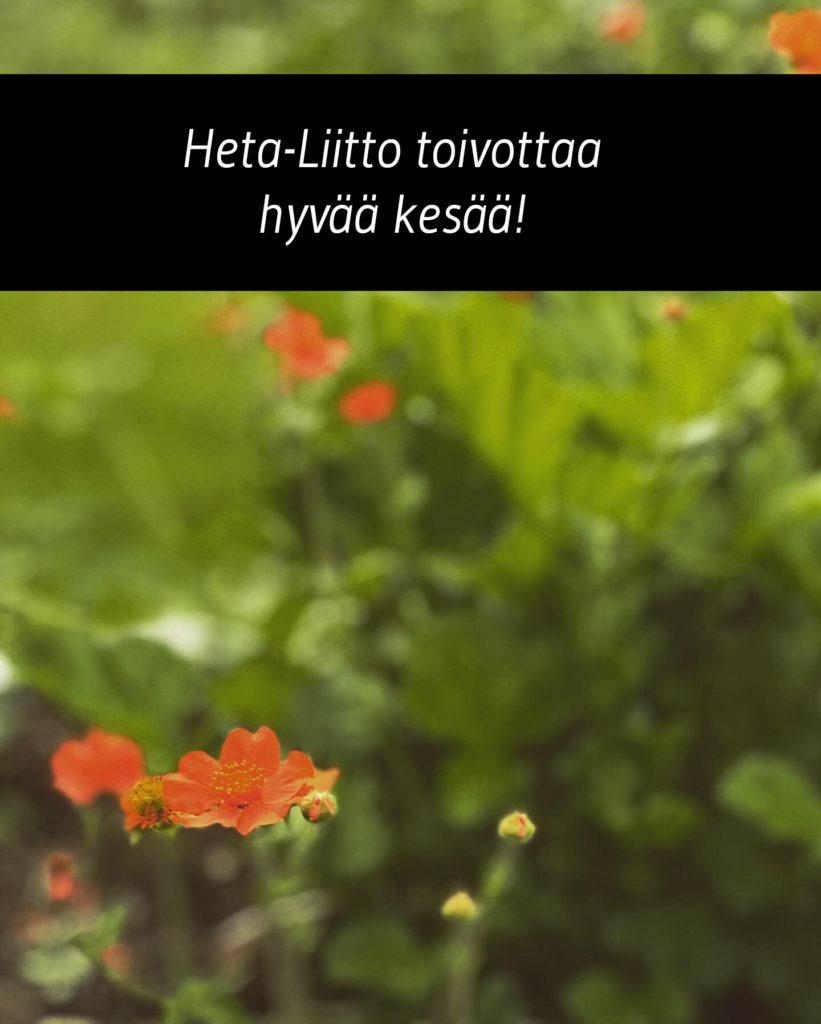 """Kuvassa on teksti """"Heta-Liitto toivottaa hyvää kesää"""" ja taustalla on vihreää kasvillisuutta, joka näkyy sumuisasti, sekä etualalla pari oranssia kukkaa."""
