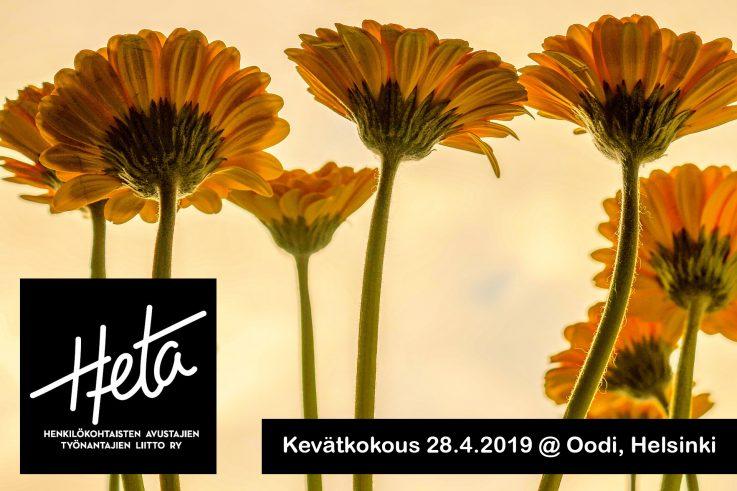 """Kuvassa on keltaisia gerberoita vaaleamman keltaista taustaa vasten. Vasemmassa alakulmassa on Hetan logo. Oikeassa alakulmassa lukee """"Kevätkokous 28.4.2019 @ Oodi, Helsinki""""."""