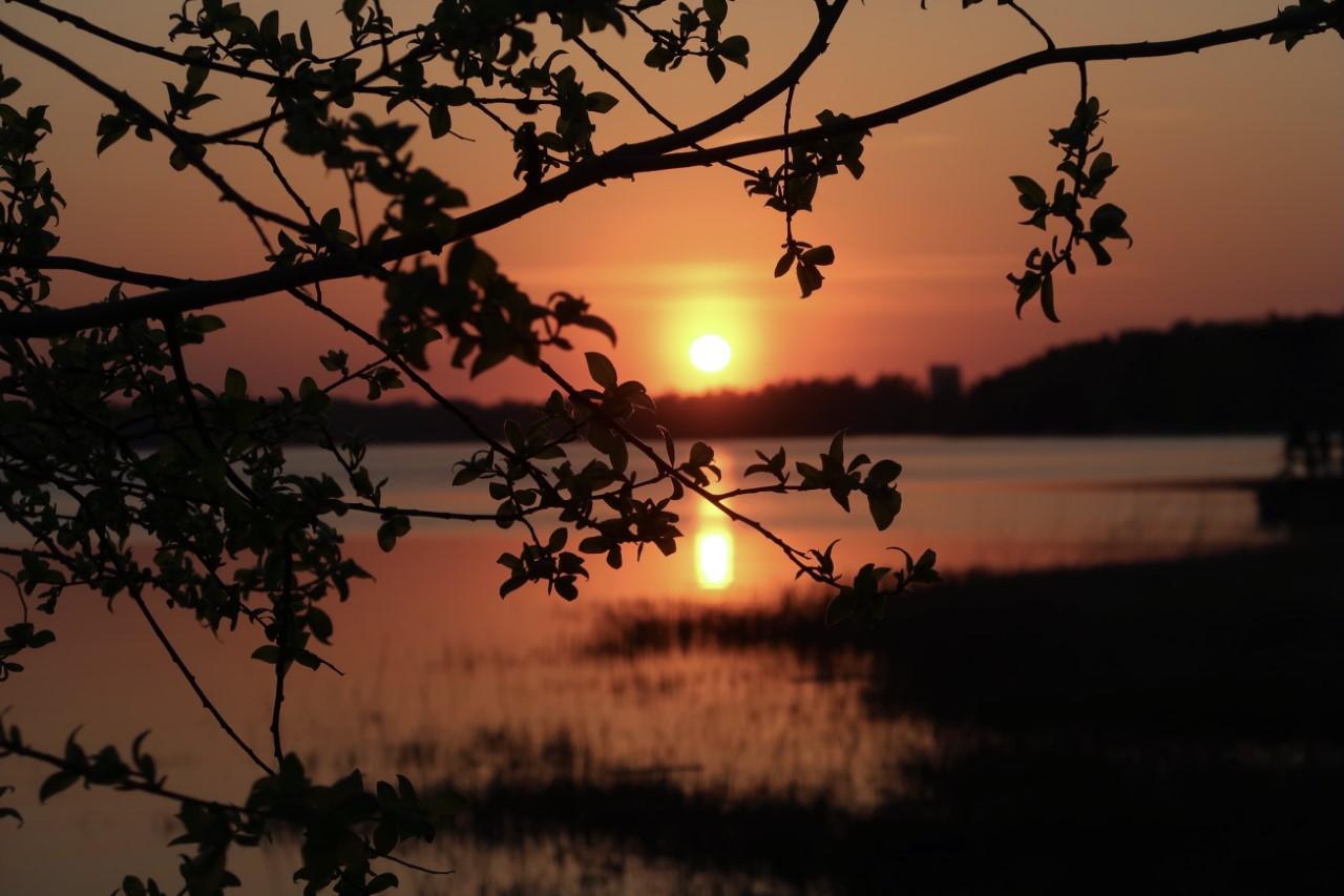 auringonlasku Munkkiniemessä